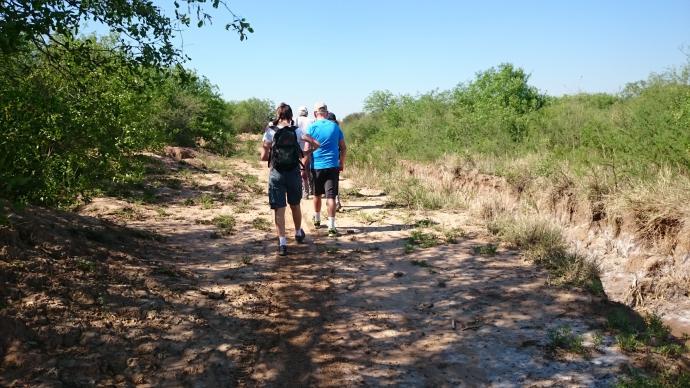 Strövtåg i Paraguay